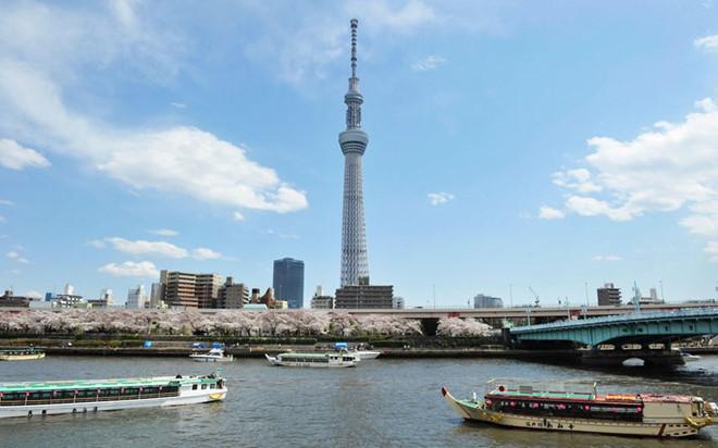 Toà tháp chọc trời của VTV dự định ban đầu sẽ vượt cả kỷ lục của tháp Tokyo Skytree. Ảnh: Telegraph.Phối cảnh Tháp truyền hình VTV.
