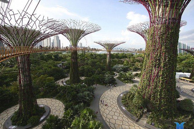 Vincity Grand Park sở hữu công viên phong cách Singapore