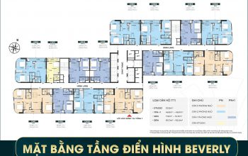 mặt bằng The Beverly Vinhomes Grand Park